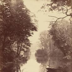 John Dillwyn Llewelyn, A Summer's Evening, Penllergare, August 25, 1854, albumen print, National Gallery of Art, Washington, Purchased as a Gift of Diana and Mallory Walker