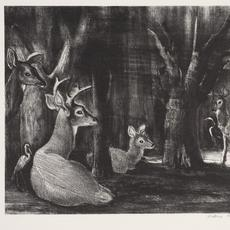 "Victoria Hutson Huntley (American, 1900 – 1971), ""Florida Deer Resting,"" 1949.  Lithograph, 9 3/4 x 13 3/8 inches.  Private collection."
