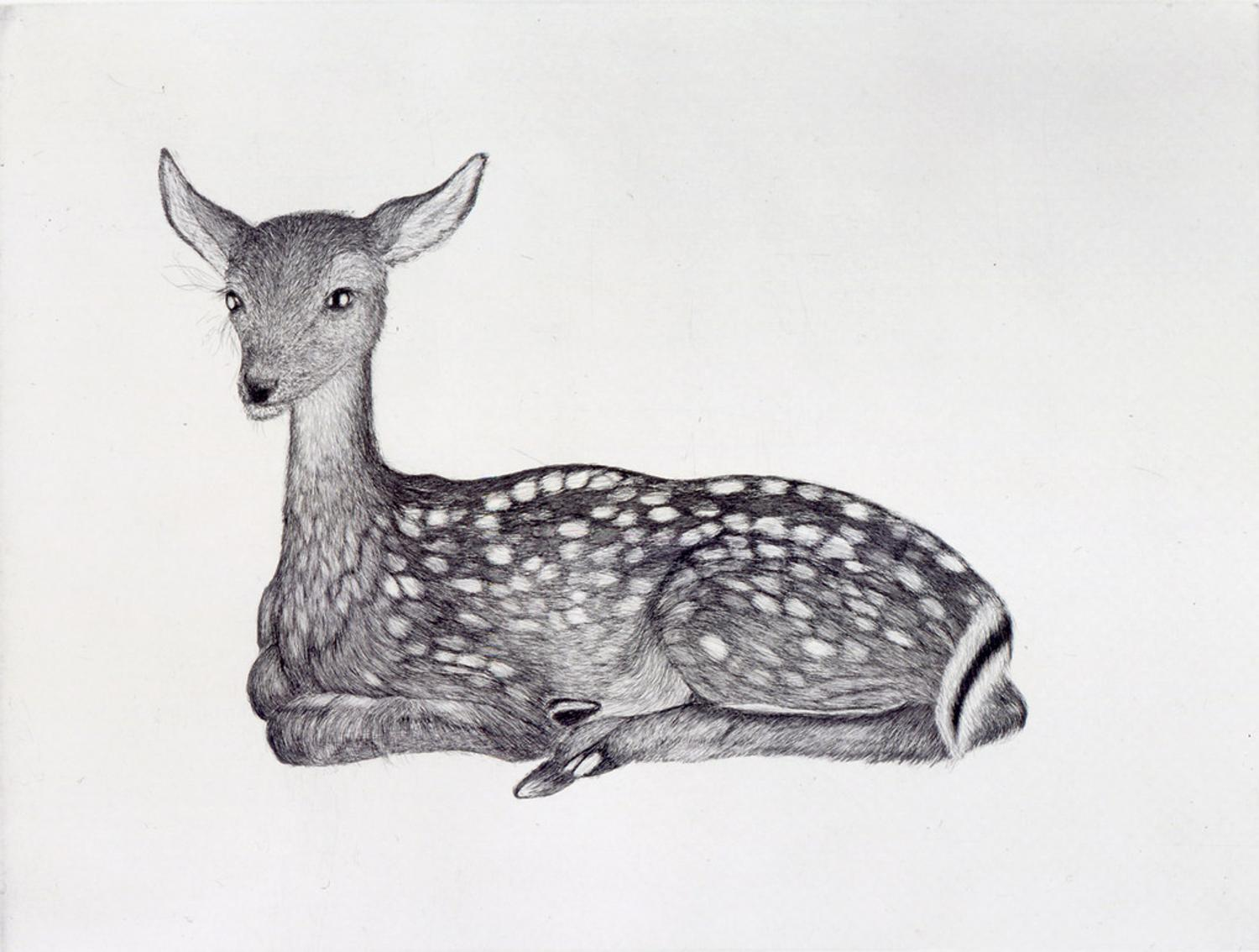 High Museum Acquires 56 Prints By Artist Kiki Smith