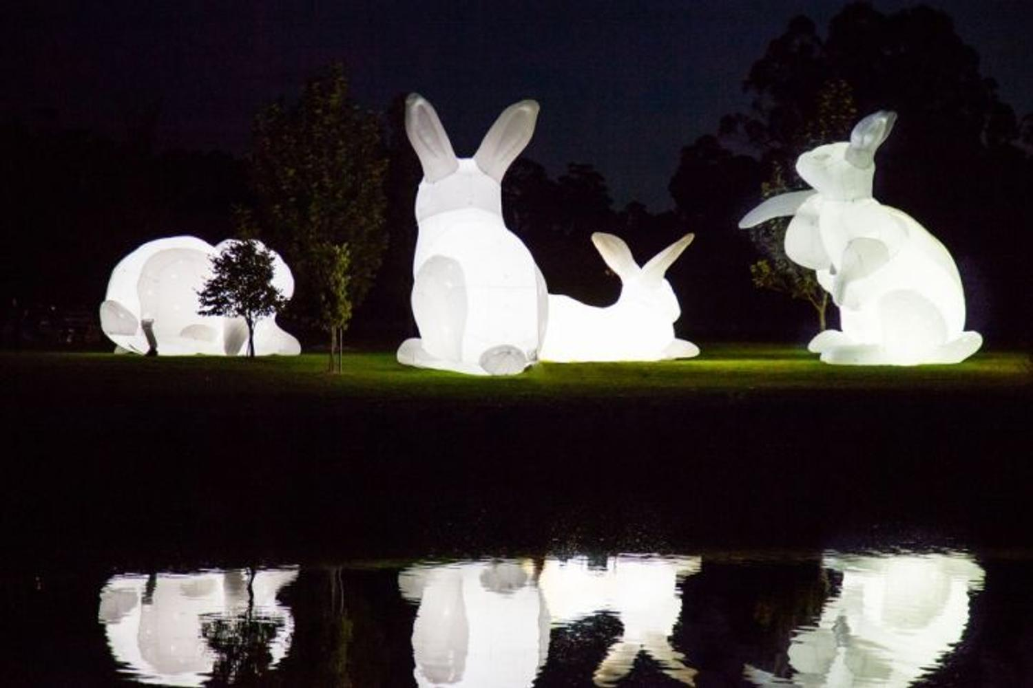 Amanda Parer S Giant Glowing Bunnies Take Over Park At