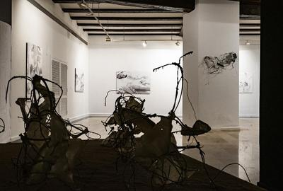 Kathryn Hart, THE OTHER VOICE, installation view