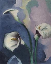 Arthur B.  Carles (1882–1952) Calla Lilies.  Oil on canvas, 16 ½ x 13 3/8 inches.  Signed lower right: Carles .