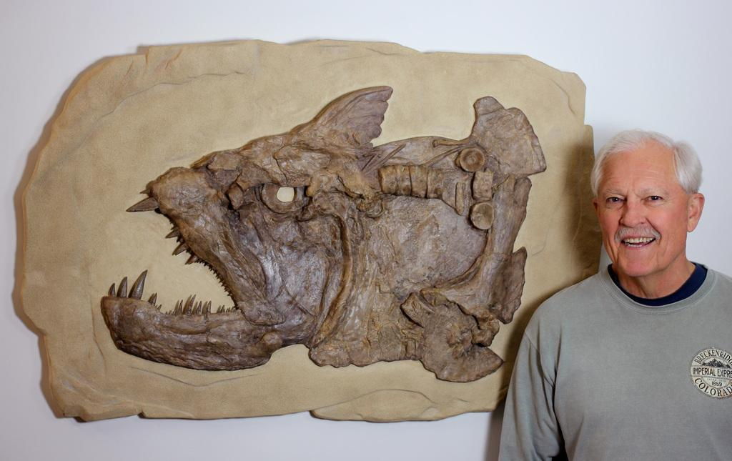 Fossil: Xiphactinus Fossil For Sale