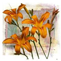 ArtSynergies: TRANSFERMATIONS, Mixed Media Digital Printmaking, Roadside Lily, Barbara Doyle, Cotuit Center for the Arts.