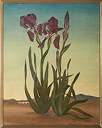 Helen Lundeberg (1908–1999) Irises (The Sentinels), 1936 Oil on canvas, 30 × 25 in.
