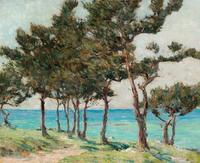 Clark Greenwood Voorhees, Cedar Trees at Whale Bay.  Oil on Board, 173/4 x 2113/16 inches.