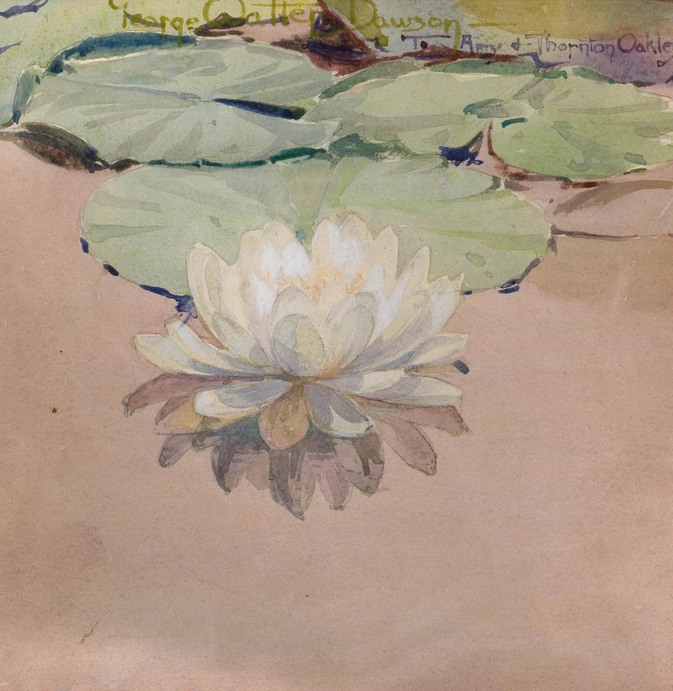 "GEORGE WALTER DAWSON (1870-1938) White Water Lily, 1912 Watercolor on paper 10 x 10 in Signed and dedicated by the artist in pencil lower right: ""George Walter Dawson to Amy & Thornton Oakley"""