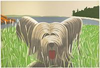 Dog at Duck Trap, 1975–76, Alex Katz (American, born in 1927).  Lithograph.  Graphische Sammlung Albertina, Vienna.  Photograph © Albertina, Vienna; Peter Ertl.  Art © 2011 Alex Katz/Licensed by VAGA, New York, NY.  Courtesy, Museum of Fine Arts, Boston