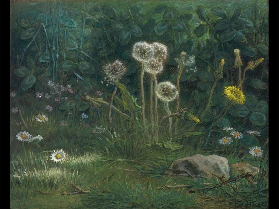 Jean-François Millet, Dandelions, 1867–68.  Pastel on tan wove paper.  Gift of Quincy Adams Shaw through Quincy Adams Shaw, Jr., and Mrs.  Marian Shaw Haughton.