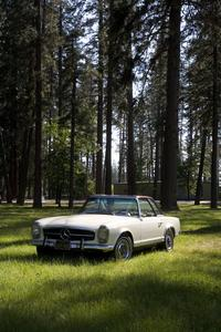 A 1964 Mercedes 230 SL also highlights Witherell's catalogue auction September 16 to 30.