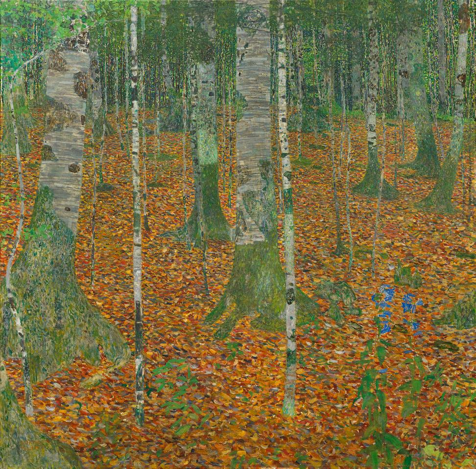Gustav Klimt, Birch Forest, 1903, Oil on canvas, 42 1/4 x 42 1/4 inches, Paul G.  Allen Family Collection