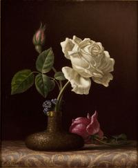 "Martin Johnson Heade, ""The White Rose,"" c.  1874–80, oil on artist's board, 11 7/8 x 9 7/8 inches.  Promised gift of Barbara Palmer."