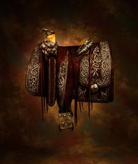 Pancho Villa's saddle set a new world record on Saturday, January 28, 2012 when High Noon Western Americana sold it for $718,000.
