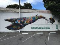 Louis Masai, Back Whale Los Angeles