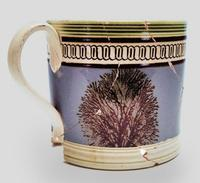 Part of the loan exhibition is a mochaware mug, probably Staffordshire, England, c.  1800.  Excavated at the Constitution Center Site, Philadelphia.  INHP, no.  F.5