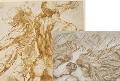Left: Anatomical Studies, Peter Paul Rubens (Flemish, 1577-1640), about 1600-1605, J.  Paul Getty Museum, Los Angeles.  Right: photo by Brittany Saake, via Art Transfer