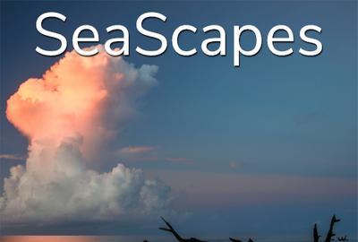 "10th Annual ""SeaScapes"" Art Exhibition www.lightspacetime.art"