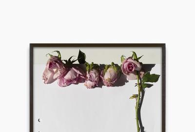 Res.  Erik's Roses, 2020 Archival Pigment Print, 12 1/2 × 10 in (31.8 × 25.4 cm).  Edition of 3 + 2 AP.  Courtesy of the artist and Zeit Contemporary Art, New York