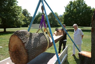 Mary Bauermeister (b.1934), Rübezahl, 2020, showing installation in progress, KölnSkulptur #10, Skulpturenpark Köln, Cologne, Germany, July 2020–Summer 2022; Photographer Simon Stockhausen