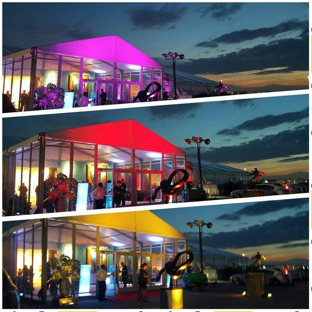 Art Boca Raton Opening Night Light Show, March 17, 2016 at the International Pavilion of the Palm Beaches at the Research Park on the Grounds of FAU