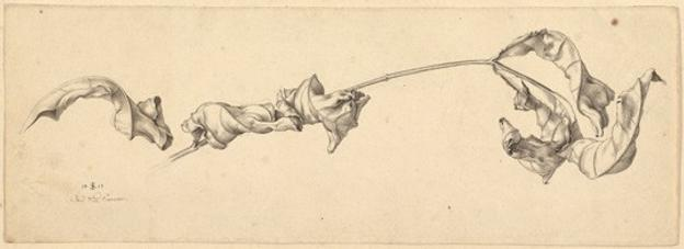 "Julius Schnorr von Carolsfeld, German (1794–1872) ""A Branch with Shriveled Leaves,"" 1817 pen and black ink over graphite on wove pape.  Private collection"