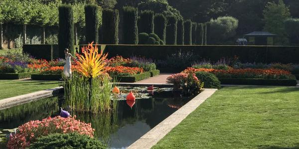 The lily pond at Filoli.