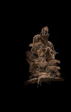 """Makonde – Tree of Life,"" with photographs by the artist Mario Arroyave"