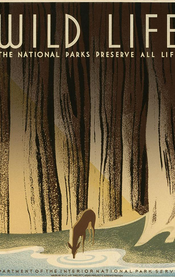 """Wild Life: The National Parks Preserve All Life."" New York City Federal Art Project, WPA, 1940, by Nicholson, Frank S.  Library of Congress."