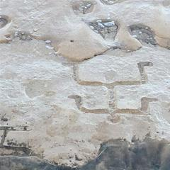 Tourists discovered petroglyphs in Hawaii.