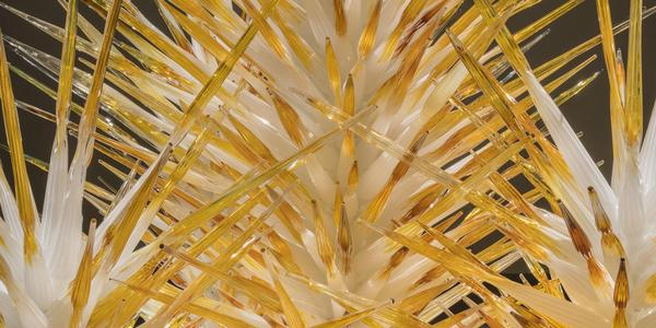 """Dale Chihuly, Alabaster and Amber Spire Towers (detail), 2018, 10 x 10 x 9' © Chihuly Studio.  All Rights Reserved.  """""""