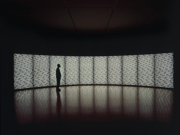 "Catherine Wagner, ""Pomegranate Wall,"" 2000; Ten light boxes with printed duratrans, florescent lights, metal frame; 96 x 480 inches; Collection of the San José Museum of Art.  Acquired from the artist upon the completion of the San José Museum of Art Artist Residency Fellowship, awarded to the artist in 1997; 2001.40."