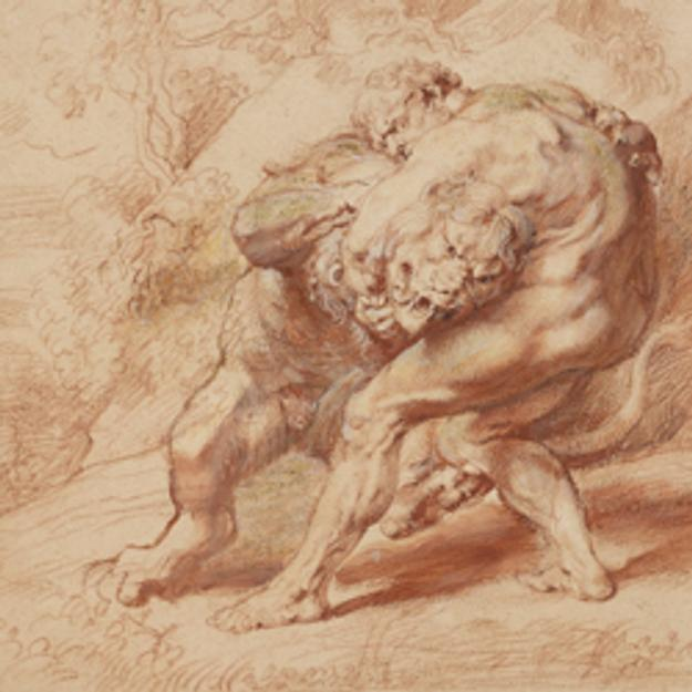 PETER PAUL RUBENS, HERCULES STRANGLING THE NEMEAN LION c.  1620.  Red, yellow, and black chalk, brush and red ink, and gouache on paper.  The Clark, 1955.992