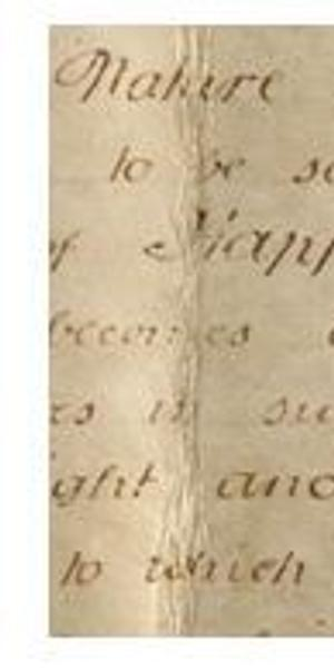 "Detail of ""Pursuit of Happiness"" on the Sussex Declaration.  West Sussex Record Office Add Mss 8981."