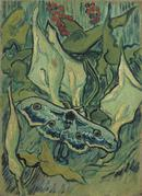 Emperor Moth, 1889.  Vincent Willem van Gogh, Dutch, 1853 1890.  Oil on canvas, 13 3/16 x 9 5/8 inches (33.5 x 24.5.cm).  Van Gogh Museum, Amsterdam.