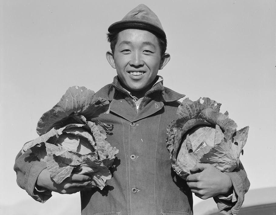 ANSEL ADAMS, Richard Kobayashi, farmer with cabbages Manzanar Relocation Center, 19.  Courtesy of Library of Congress