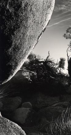 Brett Weston (American, 1911-1993).  desert landscape, California, ca.  1950.  Gelatin silver print.  Oklahoma City Museum of Art.  Gift of the Christian Keesee Collection, 2015.006, © The Brett Weston Archive