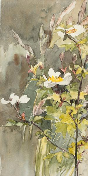 Wildflowers, not dated.  Barbara Leigh Smith Bodichon (1827–1891).  Watercolor and graphite on wove paper, 11 9/16 × 8 3/4 inches.  Delaware Art Museum, Acquisition Fund, 2017.