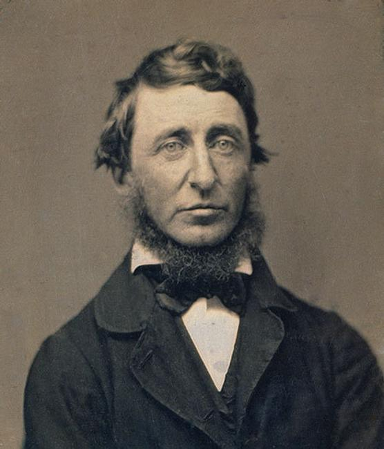 Benjamin D.  Maxham (1821–1889), Henry David Thoreau, 1856, daguerreotype.  National Portrait Gallery, Smithsonian Institution; gift of an anonymous donor.