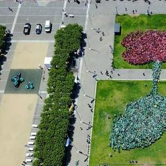 Humans form a record- sized lotus flower on July 15, 2017, in Lotus Live organized by the Asian Art Museum, SF.