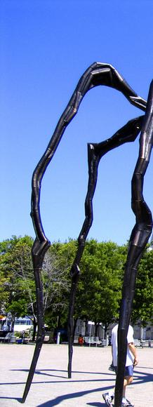 "An edition of ""Maman"" by Louise Bourgeois.  National Gallery of Canada"