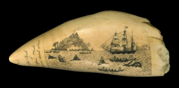 Scrimshaw whale's tooth by W.L.  Roderick, sold for $180,000 at Eldred's Marine Art Auction on Saturday.