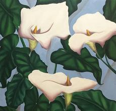 Maribel Matthews, Lilies, Oil on Canvas, 46'' x 36''