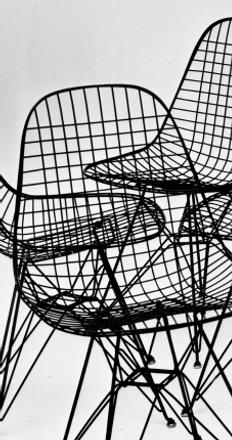 Wire Chairs with bird, 1953.  Photograph: Charles Eames/Eames Office
