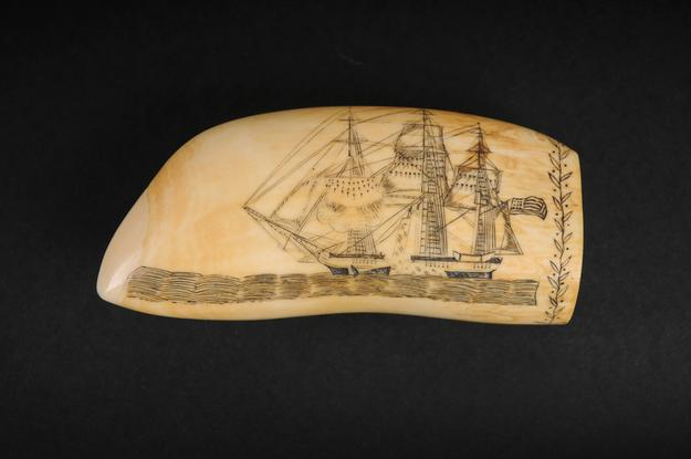 Engraved whale's tooth, 1825, Edward Burdett (1805–33).  Sperm-whale ivory and ink; 2 3/4 x 5 1/2 in.  Nantucket Historical Association Collection, gift of Robert and Nina Hellman
