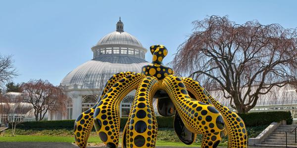 Dancing Pumpkin, 2020, The New York Botanical Garden Urethane paint on bronze, 196 7/8 x 116 7/8 x 117 ¼ in.  (500 x 296.9 x 297.8 cm) Collection of the artist.  Courtesy of Ota Fine Arts and David Zwirner