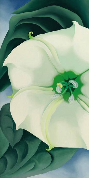"Georgia O'Keeffe's ""Jimson Weed/White Flower No.  1"" brought a record $44.4 million at auction."