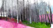 Pink, Gray and Green, Oil on Canvas, 36 x 68 inches