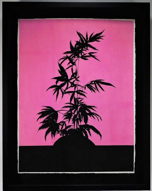 Modern marijuana painting by Ryan Sullivan (N.Y., b.  1983), a framed gouache on paper of a black silhouette of a weed plant against a vibrant pink backdrop (est.  $10,000-$15,000).