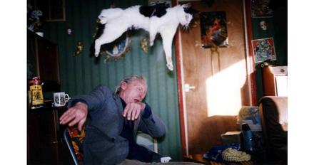 Richard Billingham, 'Ray's a Laugh' (1990-96)