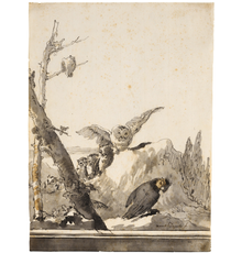 Giovanni Domenico Tiepolo (Italian 1727-1804),Owls on a Rocky Perch,c.  1770.Pen and grey ink and grey and brown wash overtraces of black chalk.  267 x 196 mm.